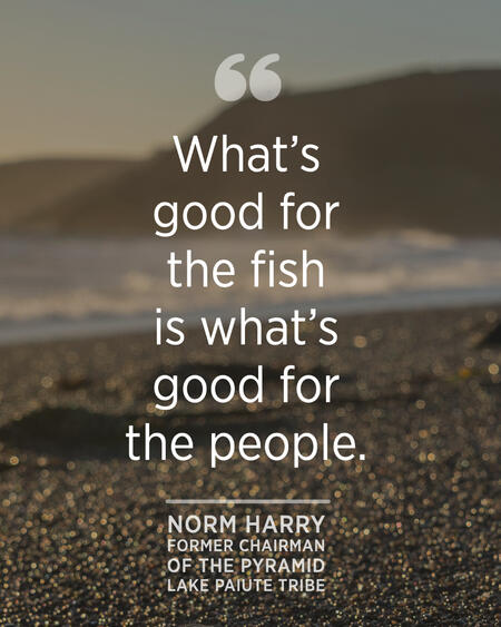 """""""What's good for the fish is what's good for the people.""""  - Norm Harry"""