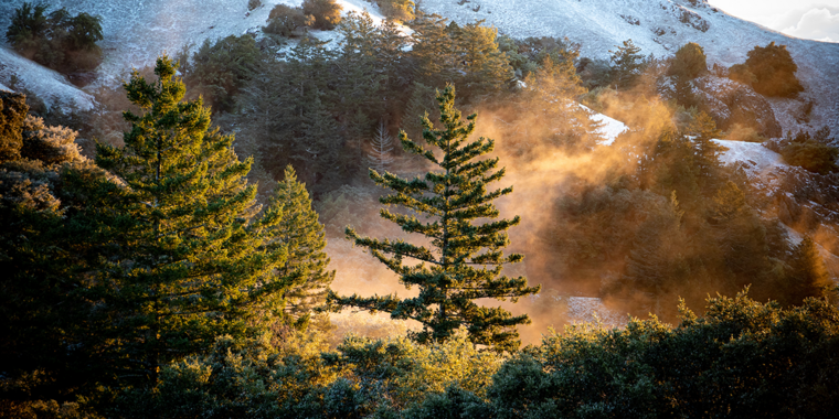 A light dusting of snow on Mt. Tamalpais