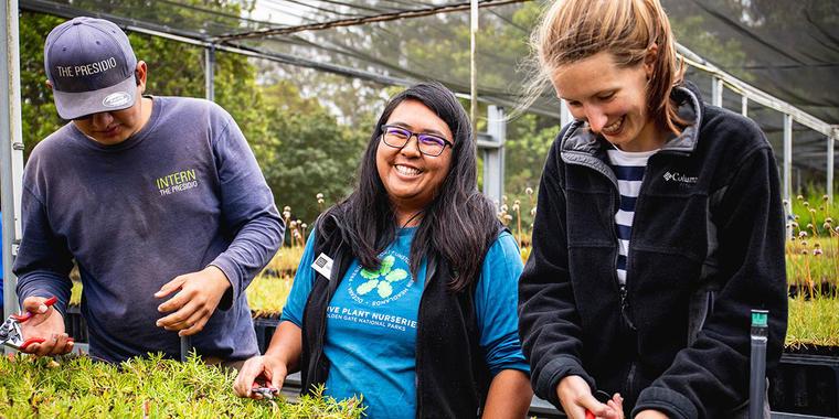 Staff and volunteers at the Presidio Native Plant Nursery.