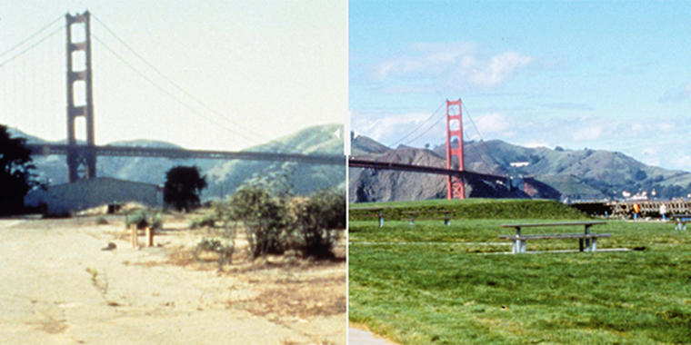 Before-and-after images crissy field
