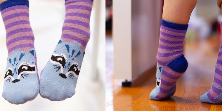 San Francisco Critter Socks Collection.