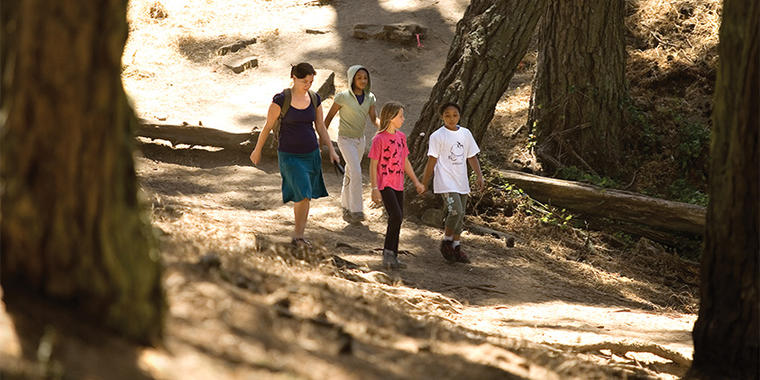 Presidio group trail
