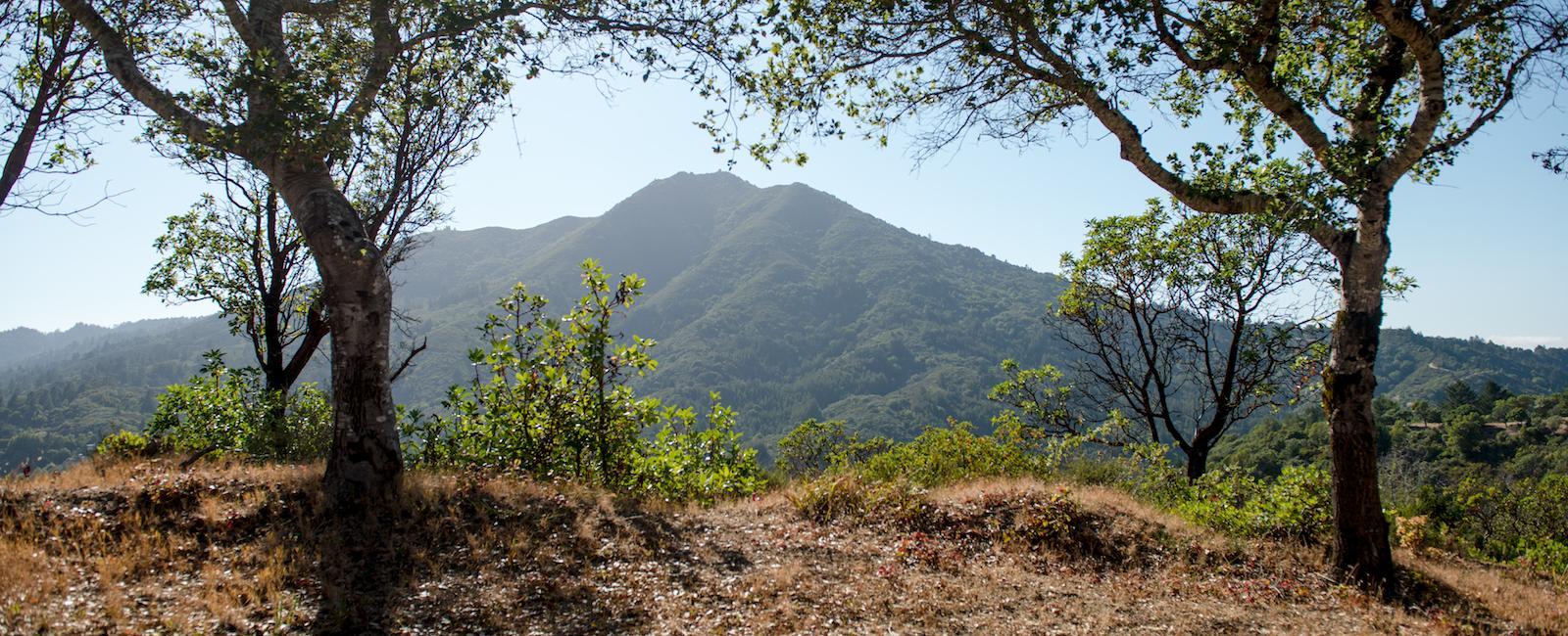 Sun shining on Mt. Tam