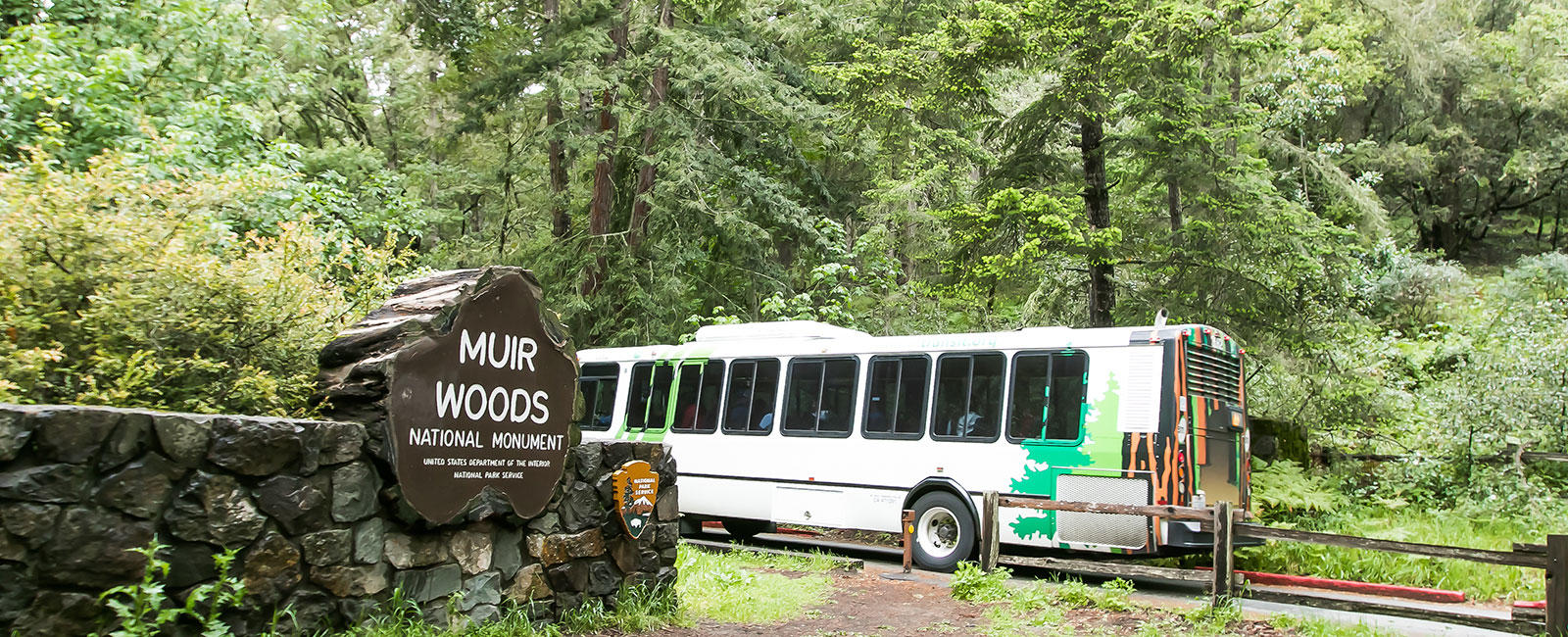 Bus entering Muir Woods National Monument