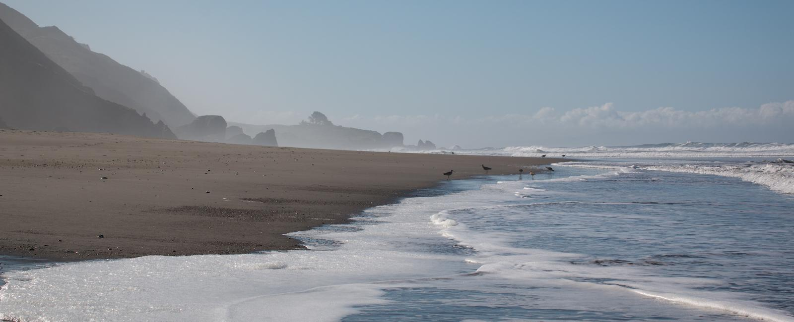 Shimmering shores of Stinson Beach