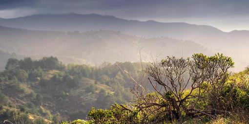 Milaga Ridge