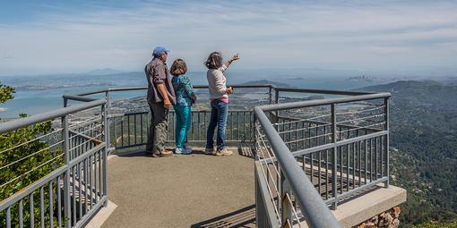 Verna Dunshee Trail, Mount Tamalpais