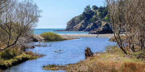 Redwood Creek at Muir Beach