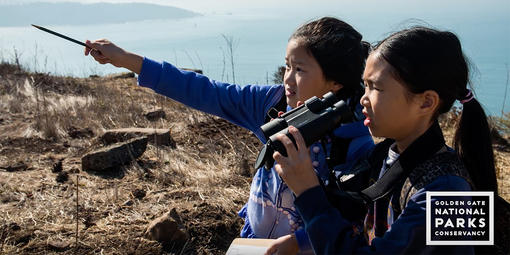 Schoolchildren visiting Hawk Hill