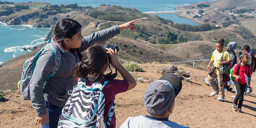 Golden Gate Raptor Program at Hawk Hill