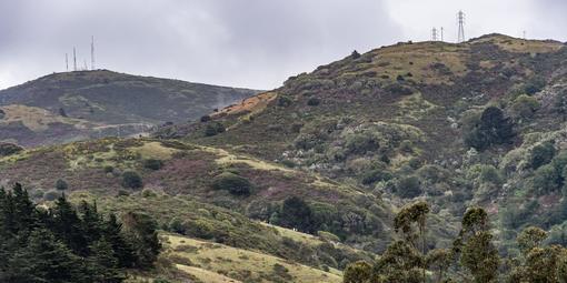 Alta Trail