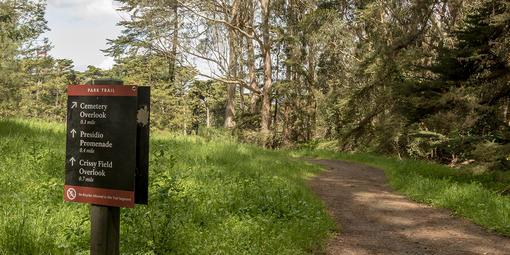 Presidio Park Trail