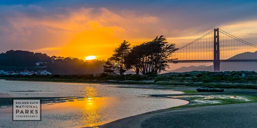 Sunset over salt marsh, Crissy Field