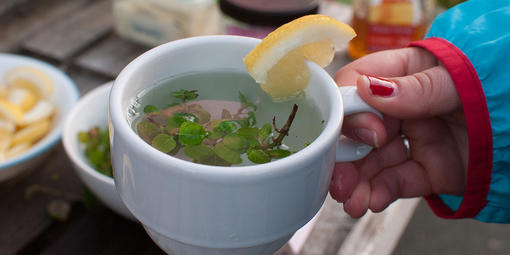 Yerba Buena tea