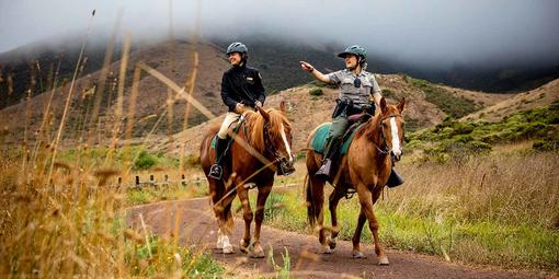 Horse Mounted Patrol out in the parks.