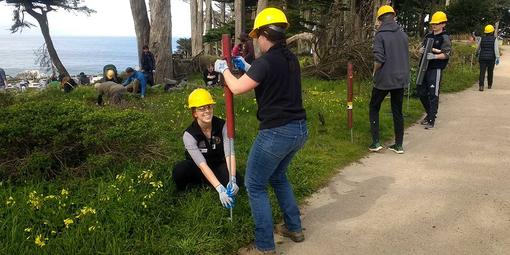 Getting to work at Love Your Parks Day at Lands End in February 2019.