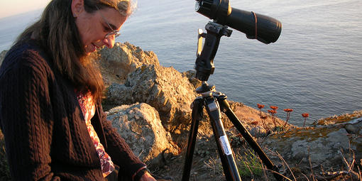 Biologist Sarah Allen records data in a notebook next to rocky California coastline.