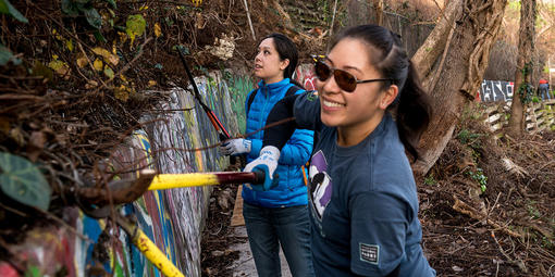 Volunteers Working in Black Point Historic Gardens