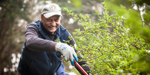 Presidio Volunteer