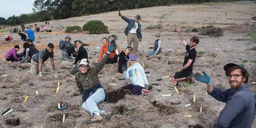 volunteer, planting, rancho corral de tierra