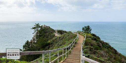boardwalk to a Muir Beach overlook
