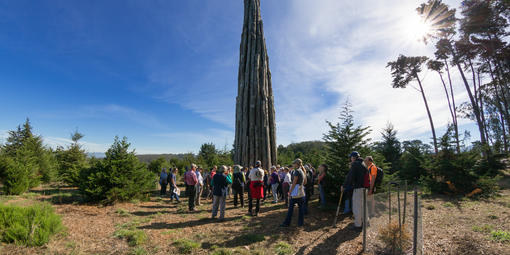 "A docent led tour group gathers at Goldsworthy's ""Spire"" in the Presidio."