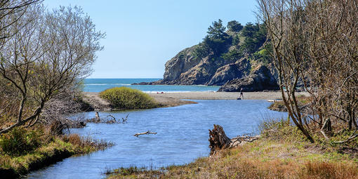 Redwood Creek flowing into the ocean