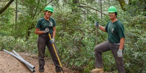 Ready to restore habitats