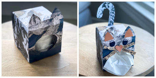 Tissue box with recycled paper covering its exterior and made to look like a bobcat in the Golden Gate National Recreation Area.