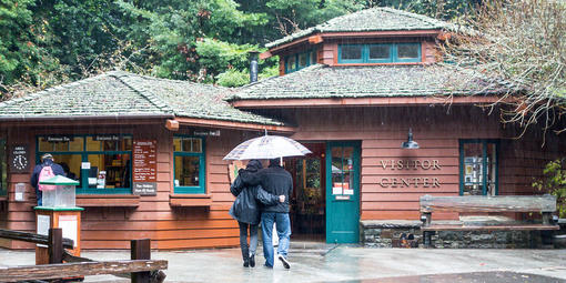 People head toward the Visitor Center under an umbrella on a rainy day