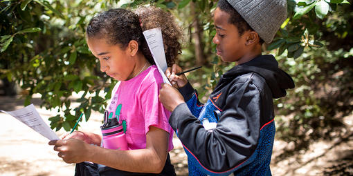 Children take a nature quiz during their hike with Latino Outdoors to Muir Woods National Monument.