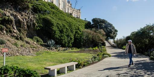 Agave Trail on Alcatraz