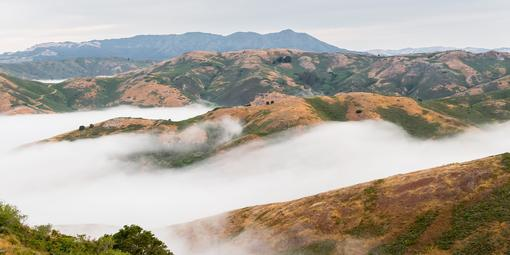 Fog rolls over the Marin Headlands