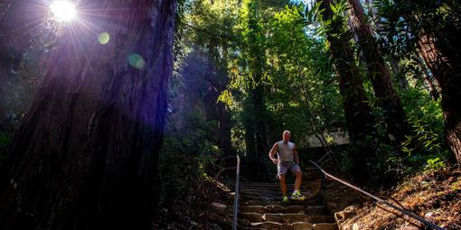 Runner takes on the challenge of the Dipsea Trail