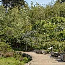 Trail at El Polin Springs, The Presidio