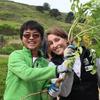 Park Stewardship Intern and Volunteer